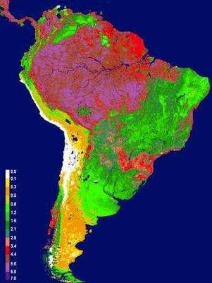 Imágenes tomadas por los satélites de la NASA muestran los patrones medios de frondosidad de la vegetación en Sudamérica: las zonas en rojo y rosa son las más frondosas; las verdes, las que tienen una menor vegetación, y las amarillas, los desiertos costeros. Foto: NASA