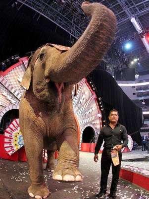 'Fully Charged', espectáculo del circo  Ringling Bros, se presenta a partir del 23 de mayo y hasta el 3 de junio en la Arena Ciudad de México. Foto: Reforma