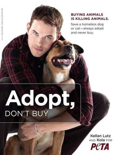Kellan Lutz es conocido por pasear siempre en compañía de su perra Kola, a la cual rescató y es por eso que decidió posar junto a ella. 'Comprar animales es matar animales'.