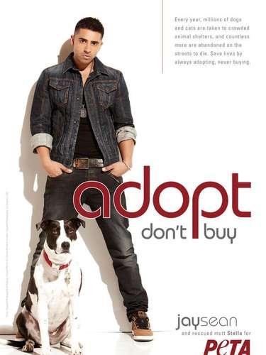 El cantante Jay Sean es la nueva celebridad que se une a PETA e contra del maltrato animal y promueve la adopción de perros. \