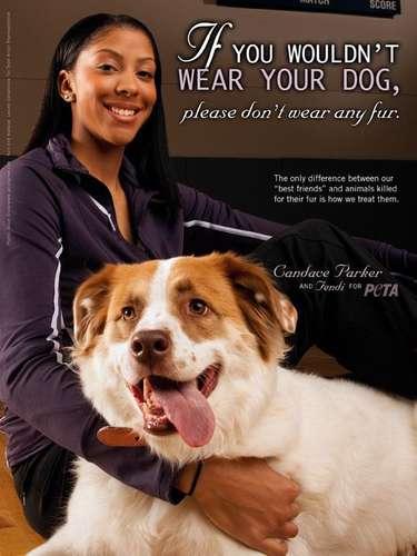 Candace Parker aparte de ser una super estrella del basquetbol, Parker también es una amiga de los animales. La campeona olímpica posó con su perrito Fendi
