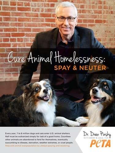 El famoso doctor de las celebridades, el Dr. Drew se une a peta a favor del rescate y adopción de animales