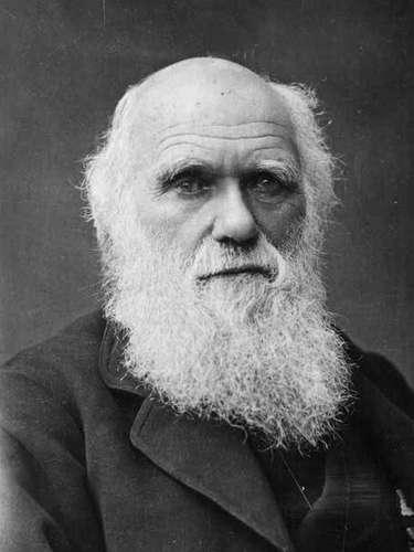 La selección natural.- En 1858, Charles Darwin publica su teoría, en base a la información que recabó en sus viajes. Aún esta audaz teoría es motivo de incesantes debates. La selección natural fue propuesta por Darwin como medio para explicar la evolución biológica. Esta explicación parte de tres premisas; la primera de ellas dicta que el rasgo sujeto a selección debe ser heredable. La segunda sostiene que debe existir variabilidad del rasgo entre los individuos de una población. La tercera premisa aduce que la variabilidad del rasgo debe dar lugar a diferencias en la supervivencia o éxito reproductor, haciendo que algunas características de nueva aparición se puedan extender en la población
