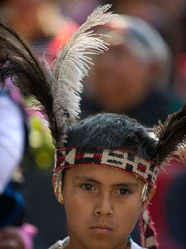 Varias agrupaciones mapuche, la principal etnia chilena, reducida actualmente a 700.000 personas, han llamado al diálogo con las autoridades para tratar el conflicto histórico entre el Estado chileno y los indígenas por las tierras que ellos consideran ancestrales y el trato político que reciben.
