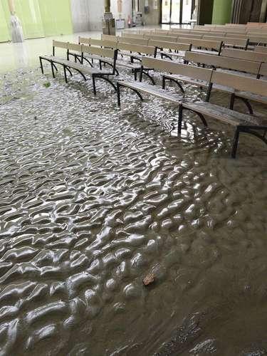 Los responsables del santuario creen que el agua podría crecer incluso por encima del nivel alcanzado en las inundaciones de octubre de 2012, que causaron daños de más de 1,3 millones de euros