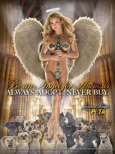 Joanna Kupra se convierte en un ángel para los animales y te invita a hacer lo mismo. \