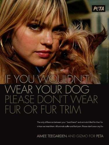 Aimee Teegarden y Gizmo. 'Si no quieres usar a tu perro como vestimenta, entonces no portes pieles'