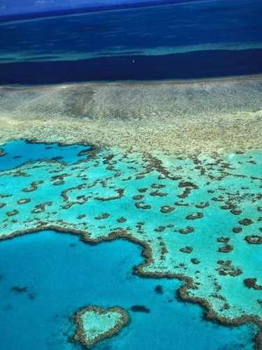2- Gran Barrera de Coral, Australia.Es consideradaPatrimonio Mundial y una maravilla natural viva; estan grande que puede verse desde el espacio.