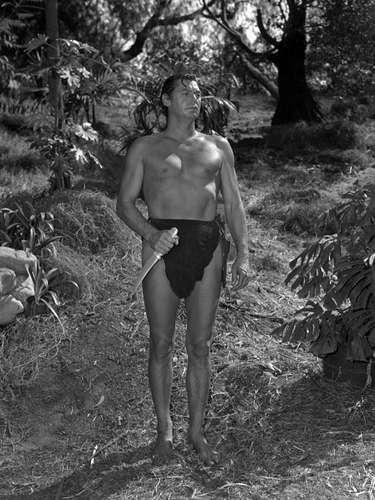 Antes de convertirse en el Tarzán más popular, papel que interpretó en 12 películas, el actor estadounidense Johnny Weissmüller fue uno de los mejores nadadores a nivel mundial durante los años 20, ganando cinco medallas de oro olímpicas y una de bronce. Ganó 52 campeonatos nacionales estadounidenses y estableció un total de 67 récords mundiales.