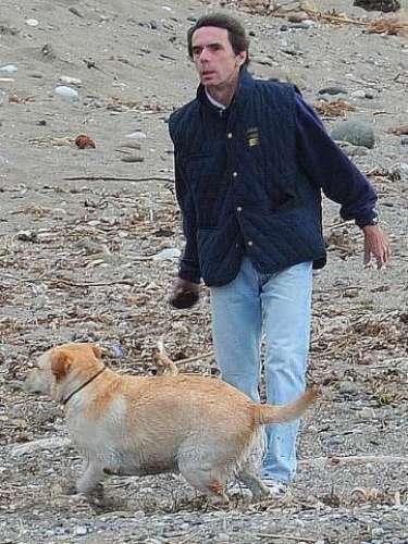 Dado que la playa no está demasiado frecuentada por bañistas, el ayuntamiento preve aprobar muy prontouna norma para permitir el acceso de perros.