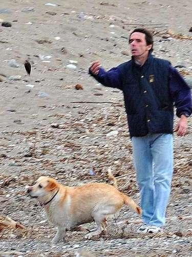 El expresidente del Gobierno es un gran amante de los animales. Aprovechando su escapada a Marbella, se ha llevado a sus perros.