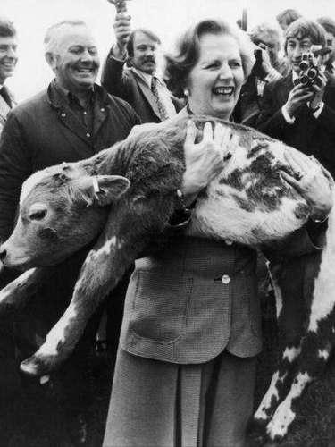 En 1979 Thatcher hace campaña electoral para su primeras elecciones. En la imagen la británica carga en brazos con un enorme ternero. Su pelo aún no se ha alzado hasta la altura que adoptó más adelante.