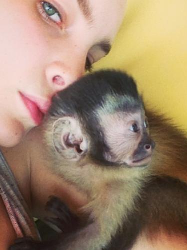 11 de Septiembre - Belinda está muy feliz con el mono que le regaló su familia en complicidad con el que se dice es su nuevo novio.