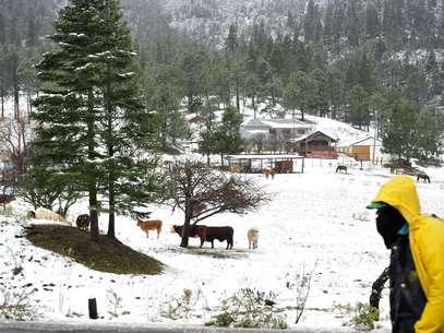 Podría nevar en algunas zonas del país Foto: EFE en español