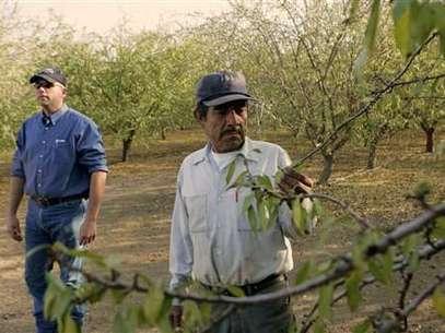 Empresas de Carolina del Sur deben verificar el estatus de sus empleados. Dura ley del estado contra los indocumentados. Foto: AP
