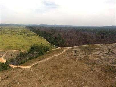Vista áerea de una porción de selva tropical amazónica destruida por leñadores y granjeros, ago 17 2012. - Tras años de logros en la lucha contra la destrucción de la selva amazónica, Brasil estaría sufriendo un incremento de la deforestación por la entrada de agricultores, leñadores, mineros y constructores a un territorio previamente intacto, según datos compilados por el Gobierno y por investigadores independientes. Foto: Nelson Feitosa / Reuters