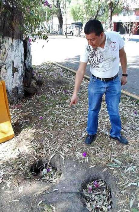 Armando Martínez, vecino de Echegaray, muestra los agujeros en donde supone habitan los roedores. Foto: Reforma