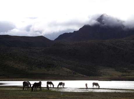 Avenida de los volcanes aventura por los andes del ecuador for Ministerio del turismo