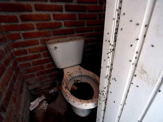 http://p1.trrsf.com/image/fget/cf/67/51/images.terra.com/2013/06/12/000mvd6540647.jpg
