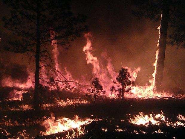 http://p1.trrsf.com/image/fget/cf/67/51/images.terra.com/2012/06/01/wildfires00320120601114338.jpg